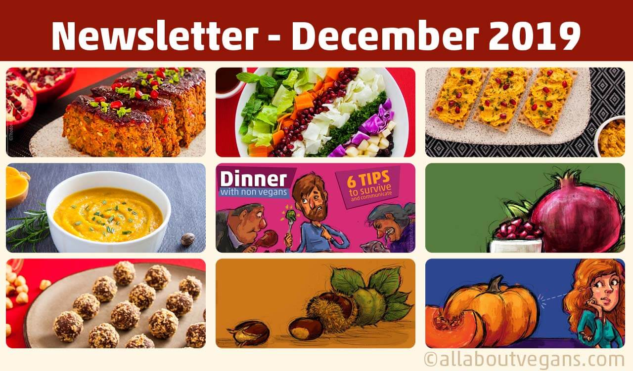 Newsletter Δεκέμβριος 2019