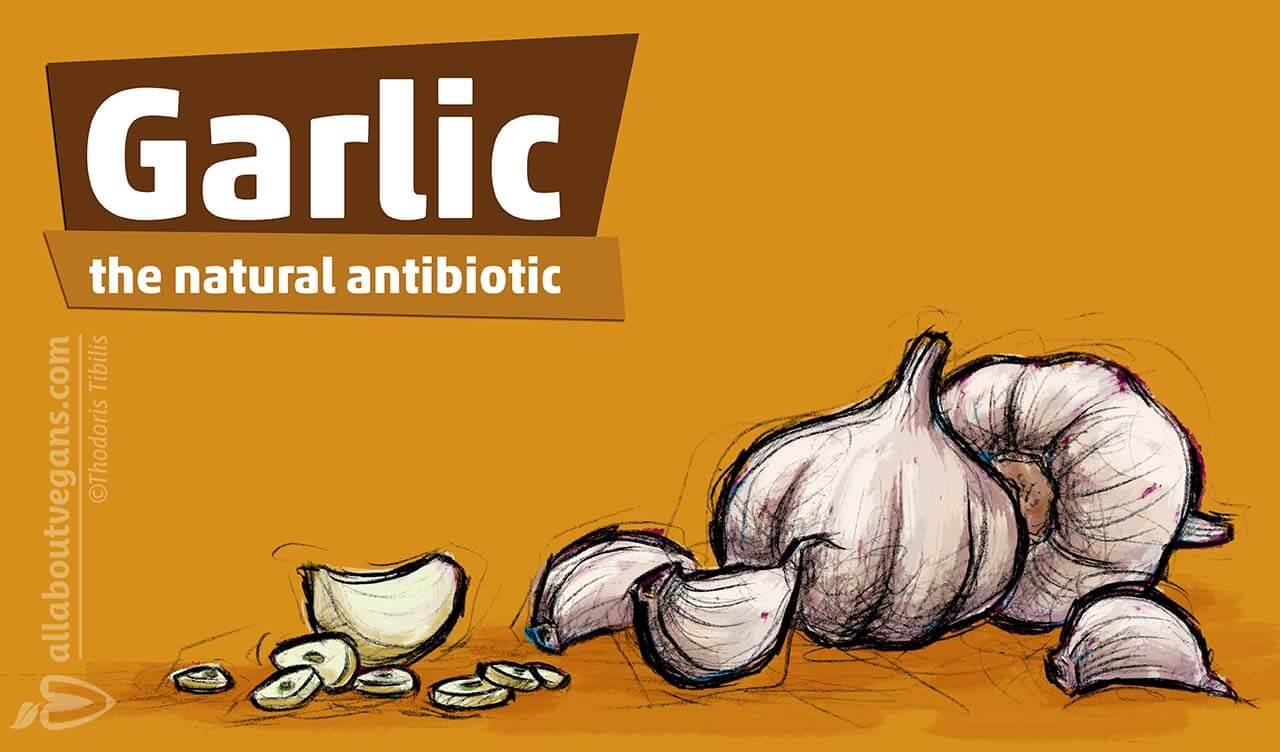 Σκόρδο: το φυσικό αντιβιοτικό