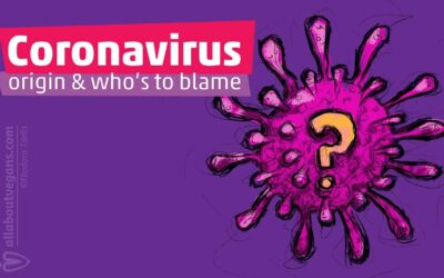 What is the origin of coronavirus? Who is to blame?