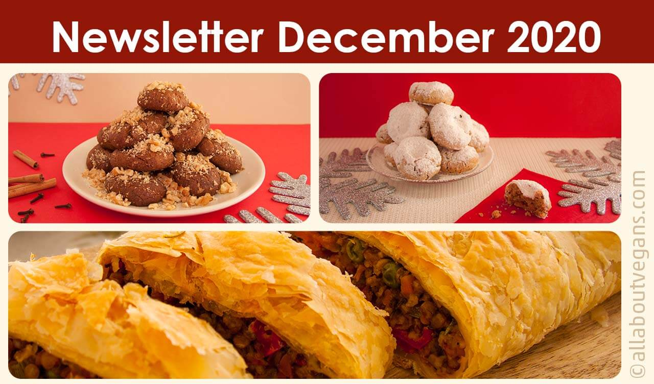 Newsletter – Δεκέμβριος (Χριστούγεννα) 2020