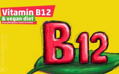 Vitamin B12 and vegan diet: Everything you need to know